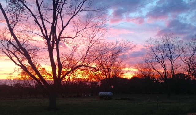 Sunset at Koinonia Farm in Americus, GA